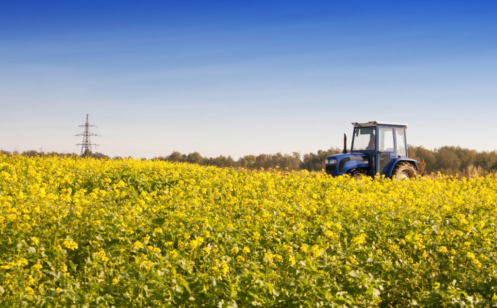 Agrosilva übernimmt Hofgut Oberschelklingen